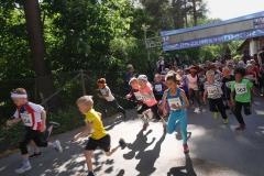 Start Lilla Bagisloppet 2016